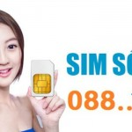 dau-so-088-cua-vinaphone-dang-bi-thao-tung-gia-8270